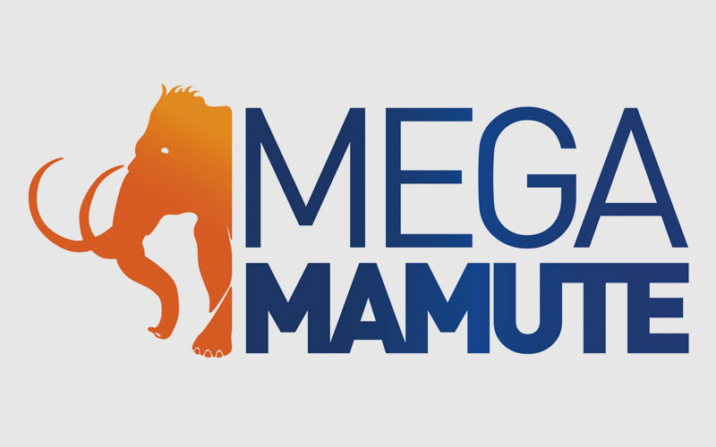 Loja online MegaMamute é confiável? Veja como comprar