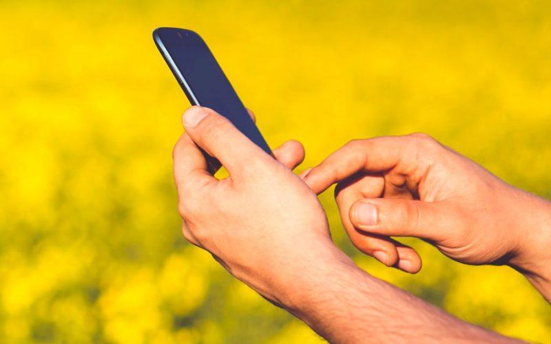 Códex: app ajuda o produtor a entender o Código Florestal Brasileiro
