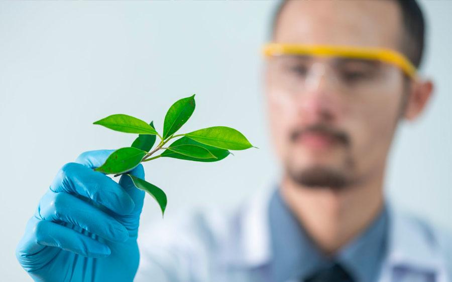 60% dos jovens defendem mais investimentos em ciência