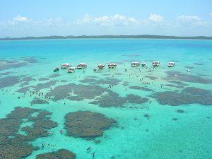 Conheça a Praia de Antunes em Maragogi