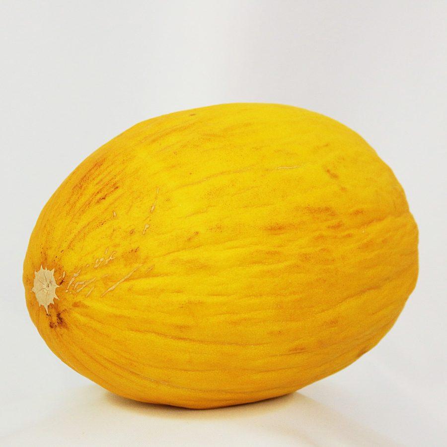 Melão amarelo, o mais comum