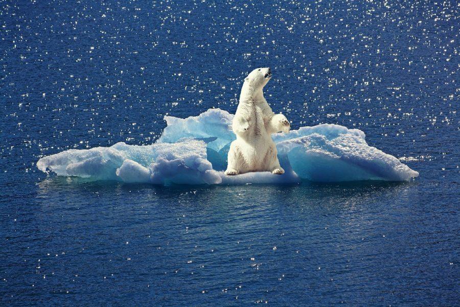 Os oceanos captaram mais de 90% do excesso de calor causado pelas mudanças climáticas