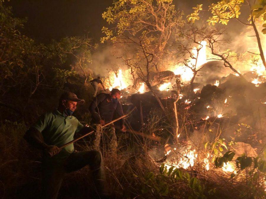 Brigadistas voluntários se uniram para combater incêndio na Serra da Lua, em Monte Alegre — Foto: Ideflor-Bio/Divulgação