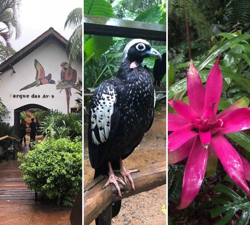 Parque das Aves (fotos: Alan Correa)