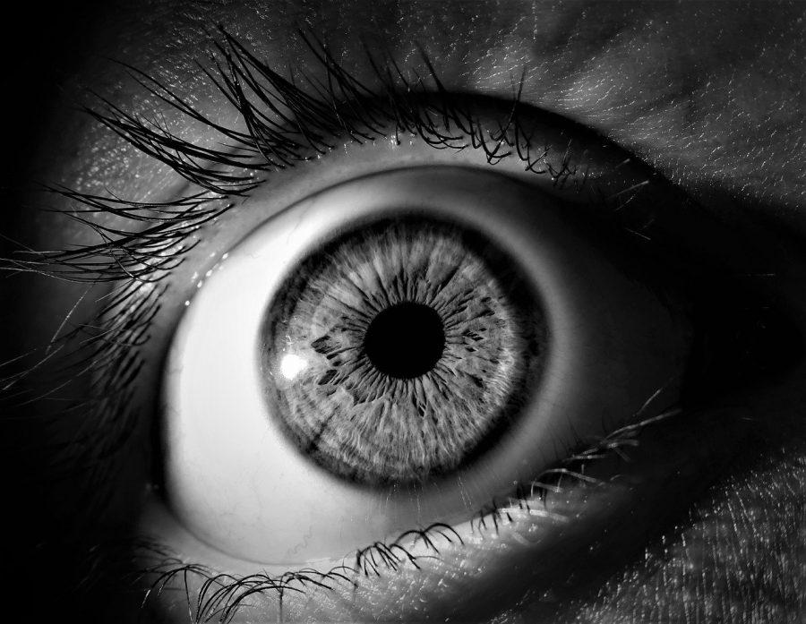 Sabe aquela coisinha rosa no canto do olhos? Na verdade, é o remanescente de uma terceira pálpebra.