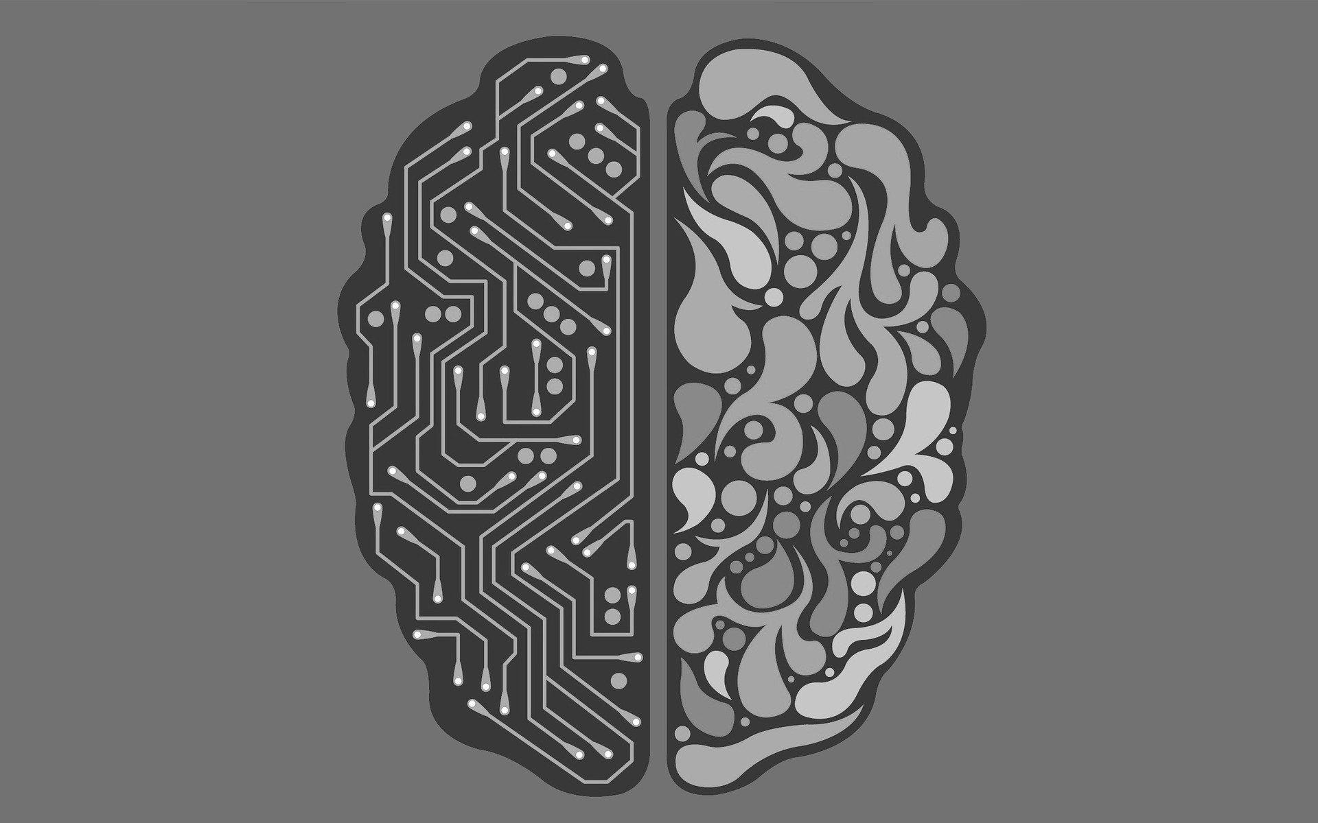 CEO do Google diz que Inteligência artificial precisa ser regulamentada