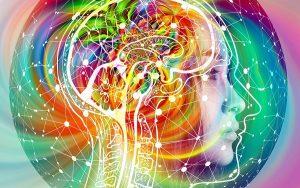 Entendendo melhor seu cérebro com 3 dicas