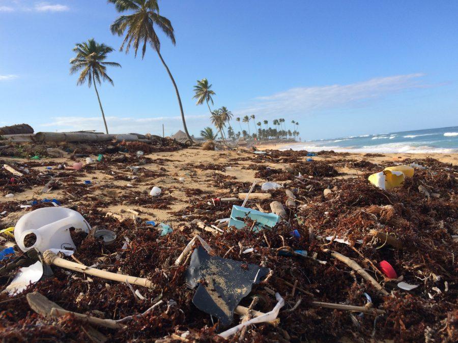 Os seres humanos produzem 300 milhões de toneladas de plástico novo a cada ano.