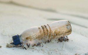 Microbiologista fala sobre bactérias que comem plástico