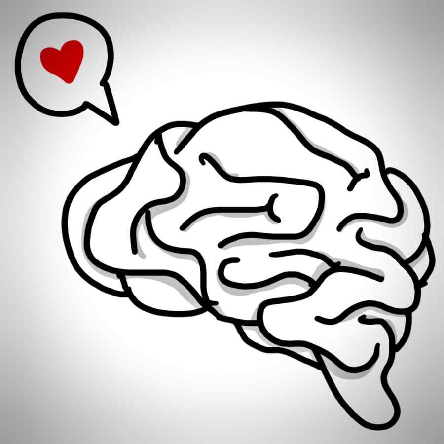 Tudo é uma questão de saber como aproveitar melhor se cerebro e as inforações que colocará nele (Foto: reprodução)