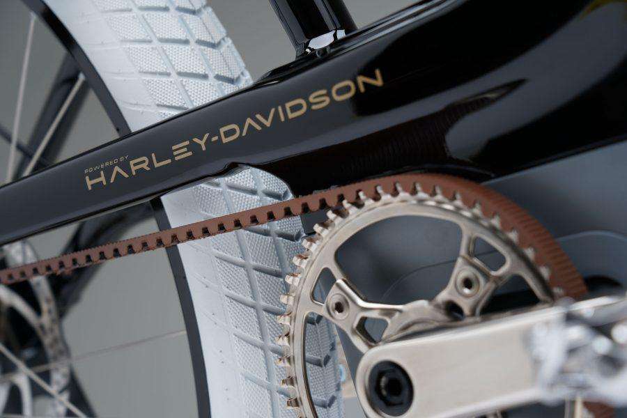 A bicicleta nasceu nas garagens da Serial 1 Cycle Company, uma submarca da própria Harley-Davidson.