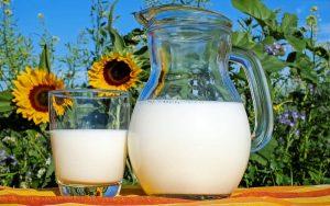 Qual o melhor tipo de leite: integral, desnatado ou vegetal?