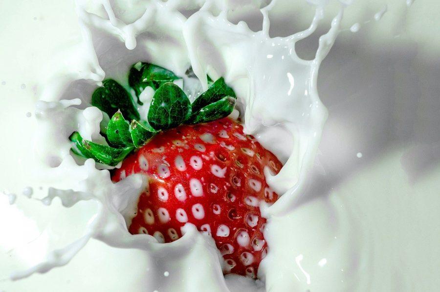 Se você for ao mercado para comprar leite, encontrará uma variedade de opções. Há leite de vaca, mas também produtos à base de plantas. Para transformar uma planta em algo parecido com leite, ela deve ser hidratada, drenada, enxaguada e moída até formar uma pasta espessa, ou seca e moída até formar uma farinha. A pasta ou farinha vegetal é fortificada com vitaminas e minerais, aromatizada e diluída em água.