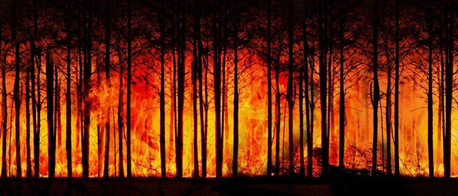 O termo mudança do clima, mudança climática ou alteração climática refere-se à variação do clima em escala global ou dos climas regionais da Terra ao longo do tempo, afetando o equilíbrio de sistemas e ecossistemas já estabelecidos por muito tempo