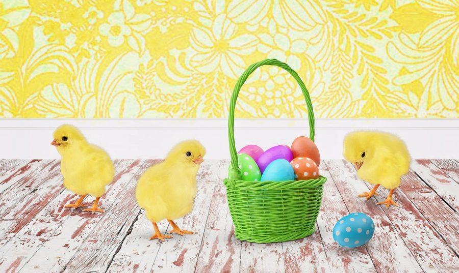Vale a Pena Diversificar? Ou Colocar Todos os Ovos na Mesma Cesta?