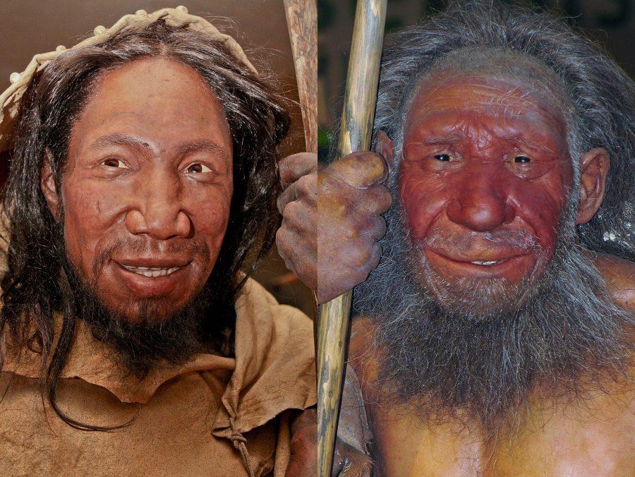 Comparação entre o rosto de um humano (esquerda) e um neandertal. (Daniela Hitzemann / Stefan Scheer / Wikimedia)