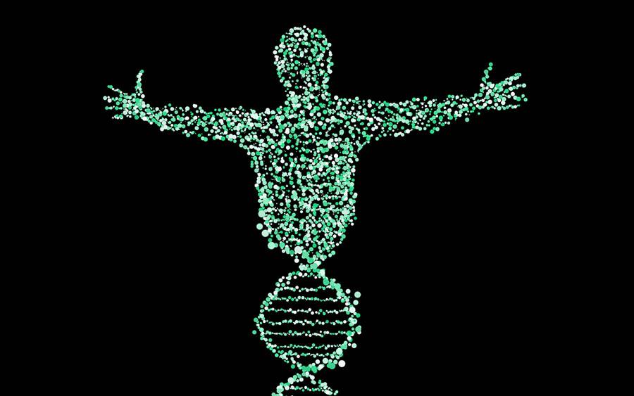 Apenas 7% do nosso genoma é exclusivamente humano