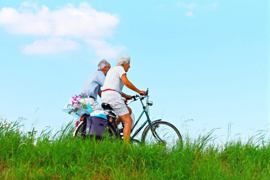 A previdência social oferece quatro tipos de jubilação: aposentadoria por idade (que se diferencia se for trabalhador urbano ou rural) , aposentadoria por tempo de contribuição (que se subdivide em aposentadoria proporcional, por pontos e comum), aposentadoria por invalidez e aposentadoria especial.